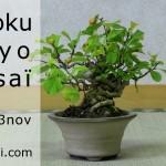 shikoku tokyo 2013 - voyage au japon