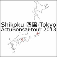 actubonsai shikoku tokyo tour 2013