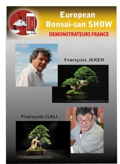 démonstrateurs français european bonsai-san show 2013