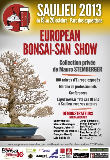 affiche saulieu bonsai 2013