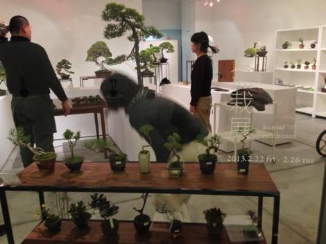 bonsai cafe x schule963 - 01
