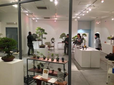 bonsai cafe x schule963 - 03