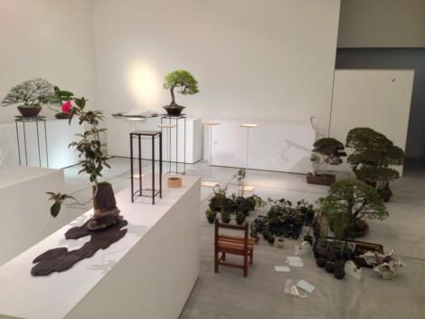 bonsai cafe x schule963 - 05