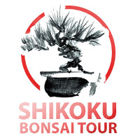 bonsai-tour-2011