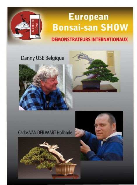 demonstrateurs internationaux european bonsai-san show 2013
