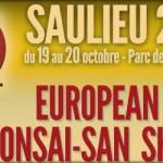 Les démonstrateurs à l'european bonsai-san show 2013