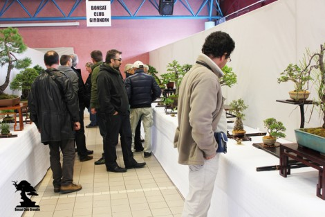 Exposition BCG 2013