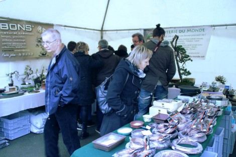 EBA 2013 - poterie du monde et bonsart