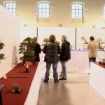 EBA2013 France bonsai - vue de l'exposition 2