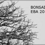EBA 2013 – tour d'horizon de l'exposition