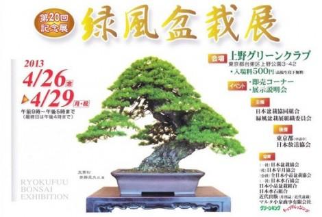 Ryokufu ten affiche 2013