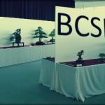BCSR, retour et impressions sur l'exposition du club