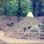 Du neuf au jardin arboretum de bonsaï