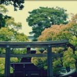 Visiter le sanctuaire Meiji à Tokyo