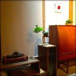 Revue du bonsai web – juin 2013 n°20