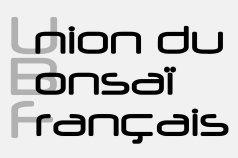 logo-ubf