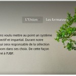 Création de l'union du bonsaï français