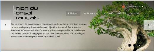 la page d'accueil de l'UBF