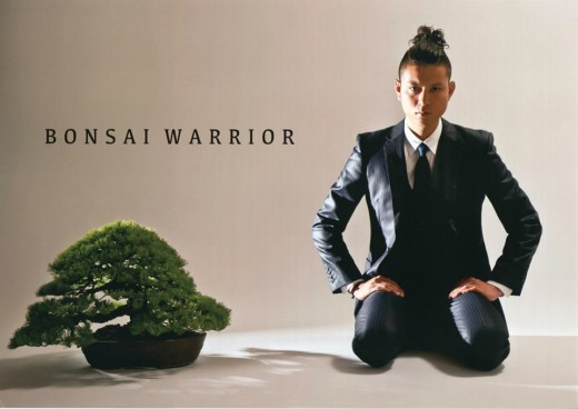 bonsai warrior - masashi hirao 01