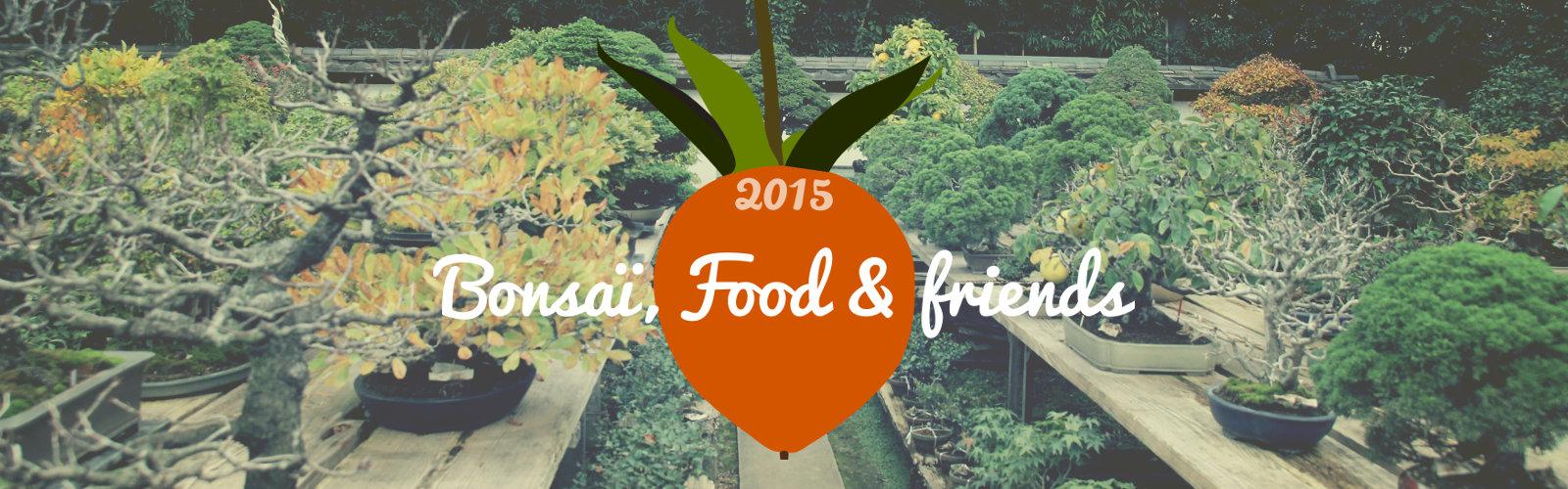 slide voyage japon 2015