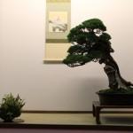 Présentation en tokonoma - saulieu 2013