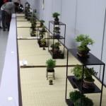 allées exposition shugaten 2013 - 01