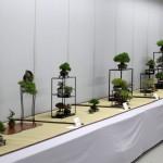 J11 shugaten 2013 à Tokyo – exposition de shohin