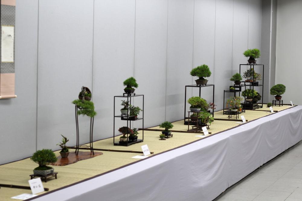allées exposition shugaten 2013 - 02