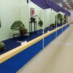 exposition taikaten 2013 -allées de l'exposition 03