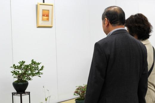 propriétaire admirant des bonsai à la shugaten