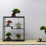 shugaten 2013 - composition shohin 01