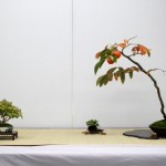 shugaten 2013 - composition shohin 03