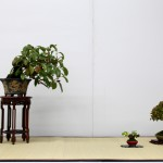 shugaten 2013 - composition shohin 04