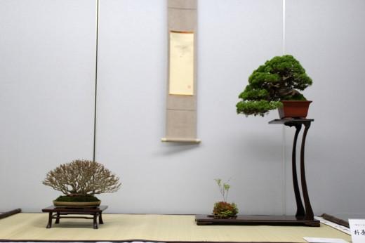 shugaten 2013 - shimpaku and buerger