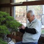 Shojuen | Famille Kandaka