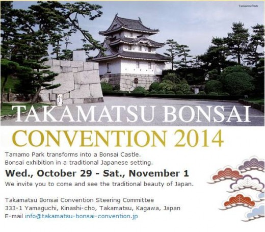 takamatsu bonsai convention 2014