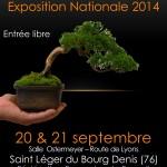 Exposition FFB de shohin 2014 à Rouen