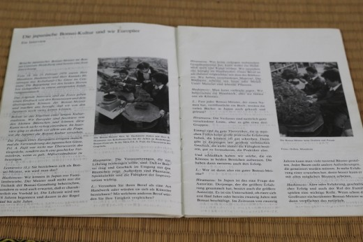 interview kuniaki hiramatsu et mr Hashimoto - bonsai club 1979 avril