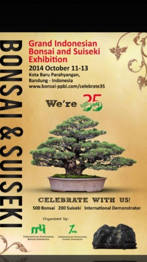 grand indonesian bonsai and suiseki exhibition