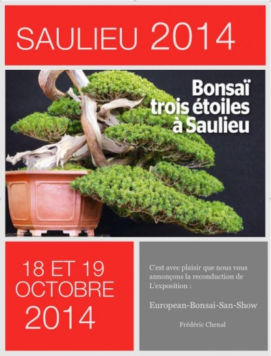 saulieu 2014 - european bonsai san show