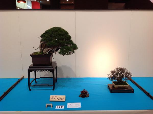 Prix kokufu 2014 - Bruno Beltrame