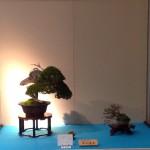 kokufu-ten 2014 - 05 (ref-13)