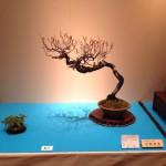 kokufu-ten 2014 - 09 (ref-12)