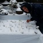 kokufu-ten 2014 - neige sur Tokyo 01 (ref-17)