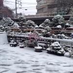 kokufu-ten 2014 - neige sur Tokyo 04 (ref-14)