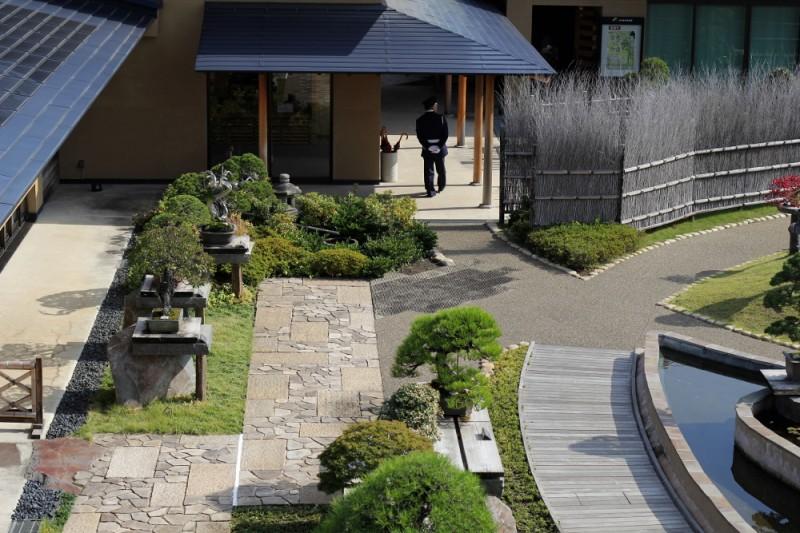 visite du musée du bonsaï d'Omiya