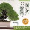 exposition ryoku-fu tokyo uneno green club