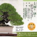 Exposition Ryokufu au Ueno Green Club, Tokyo