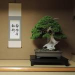 Visite à Shunkaen, le musée de maître Kobayashi
