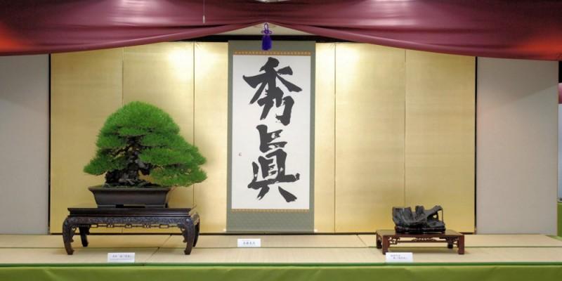 présentation pin noir masterpiece ryokufu